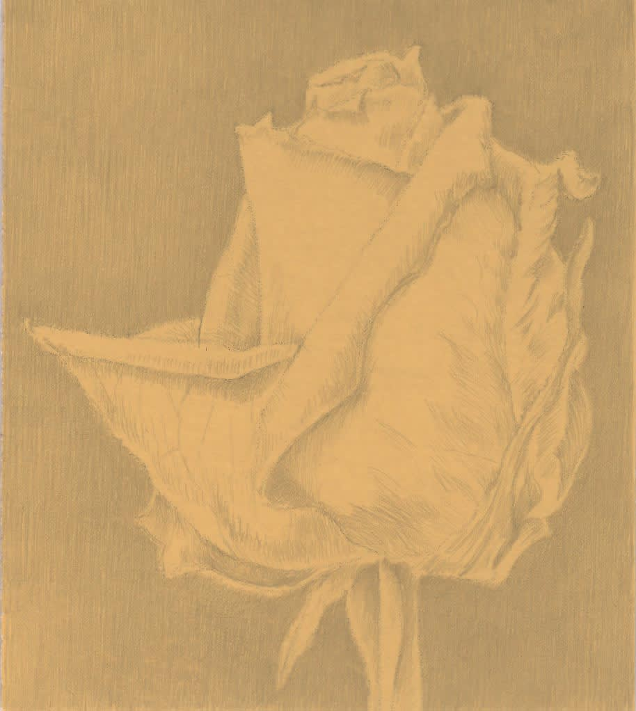 Marjorie Williams-Smith Twin, 2013 Silverpoint on Commercially Prepared Paper 3 x 2 5/8