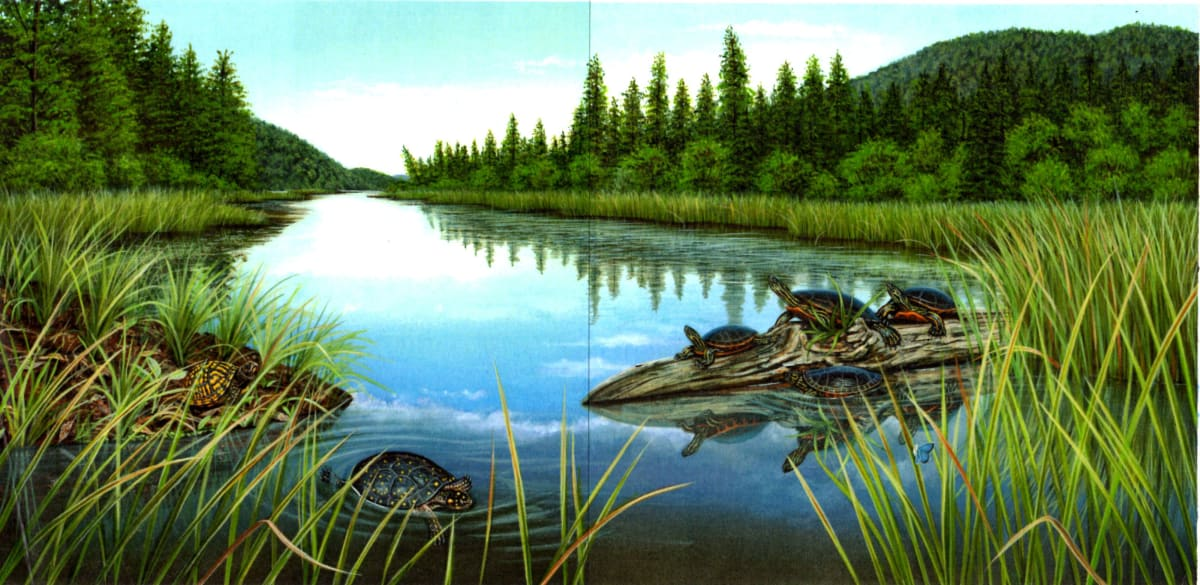 "Higgins Bond Turtles on the River, 2013 Acrylic on illustration board 14"" x 22"""