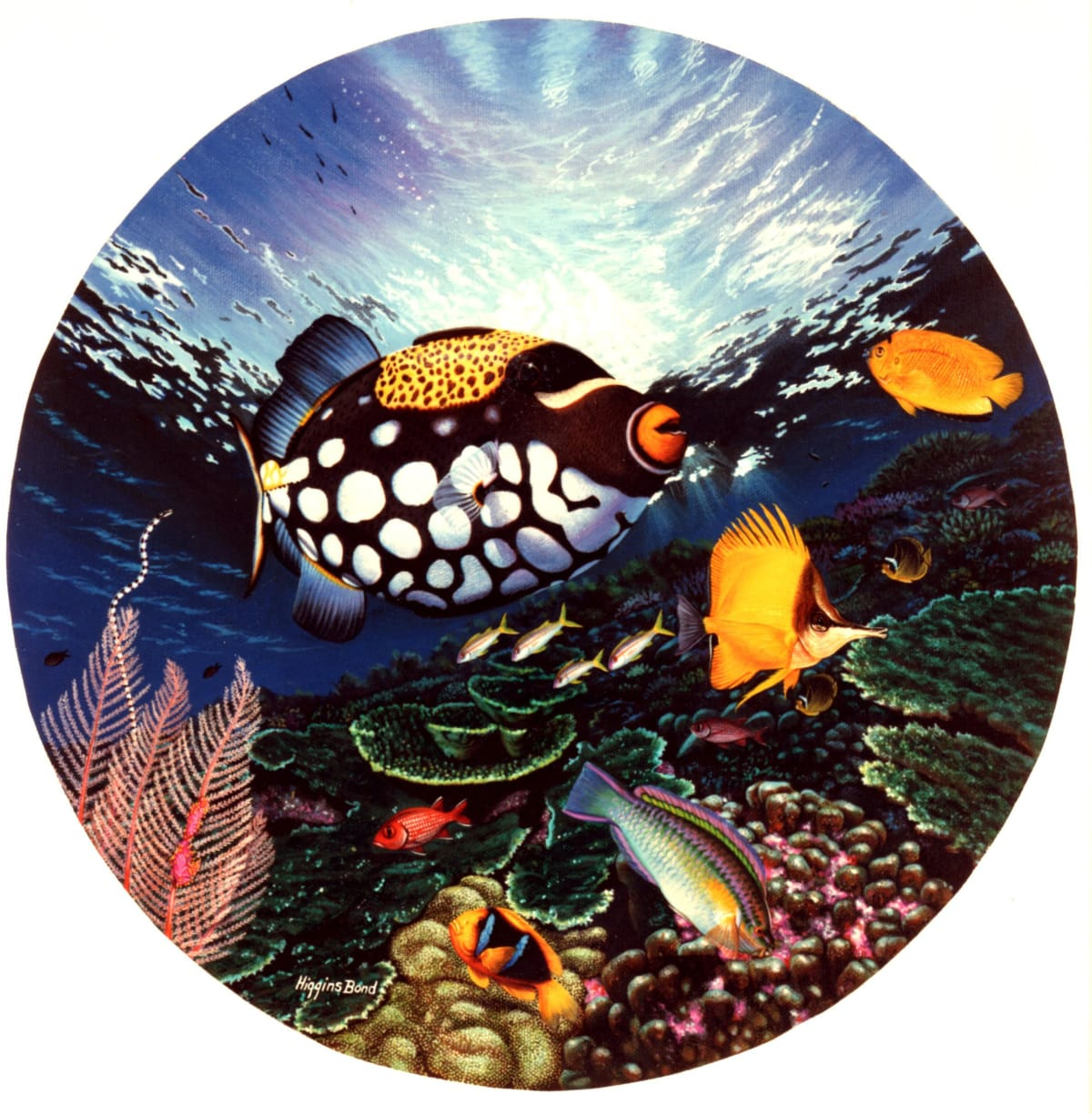 "Higgins Bond Shimmering Reef Dwellers, 1990 Acrylic on canvas 18"" x 18"""