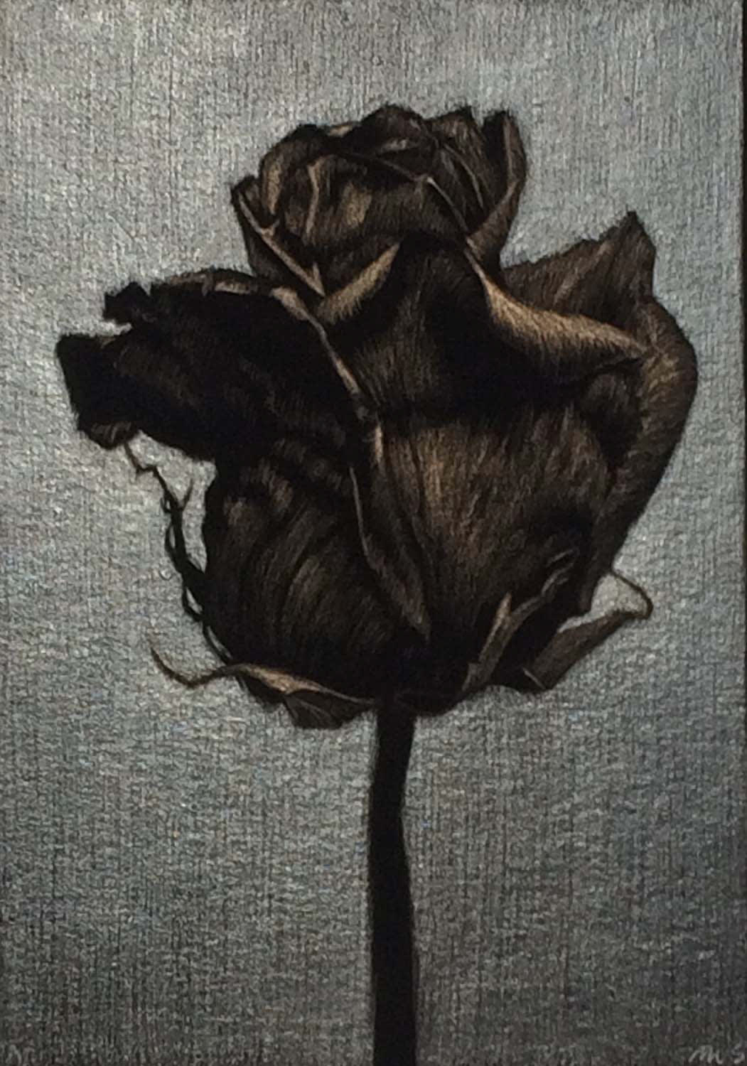 "Marjorie Williams-Smith New Rose in Gold, 2018 Aluminumpoint and goldpoint on black acrylic gesso 5 3/16"" x 3 ½"""