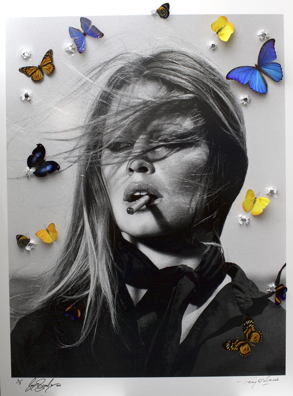 Bran Symondson, Brigitte Bardot Lit, 2019