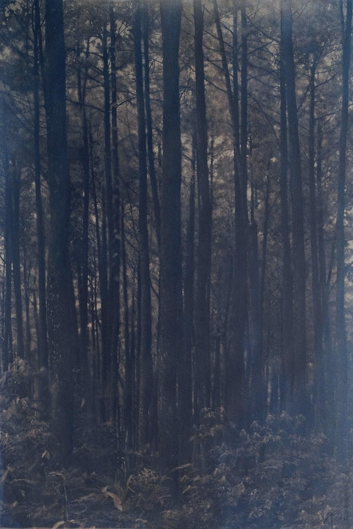 Setubuh Hutan #2, 2021