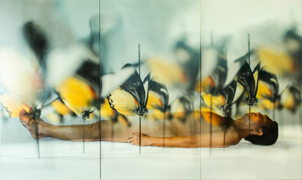 FX Harsono, Dream From The Pain Project #1, 2008