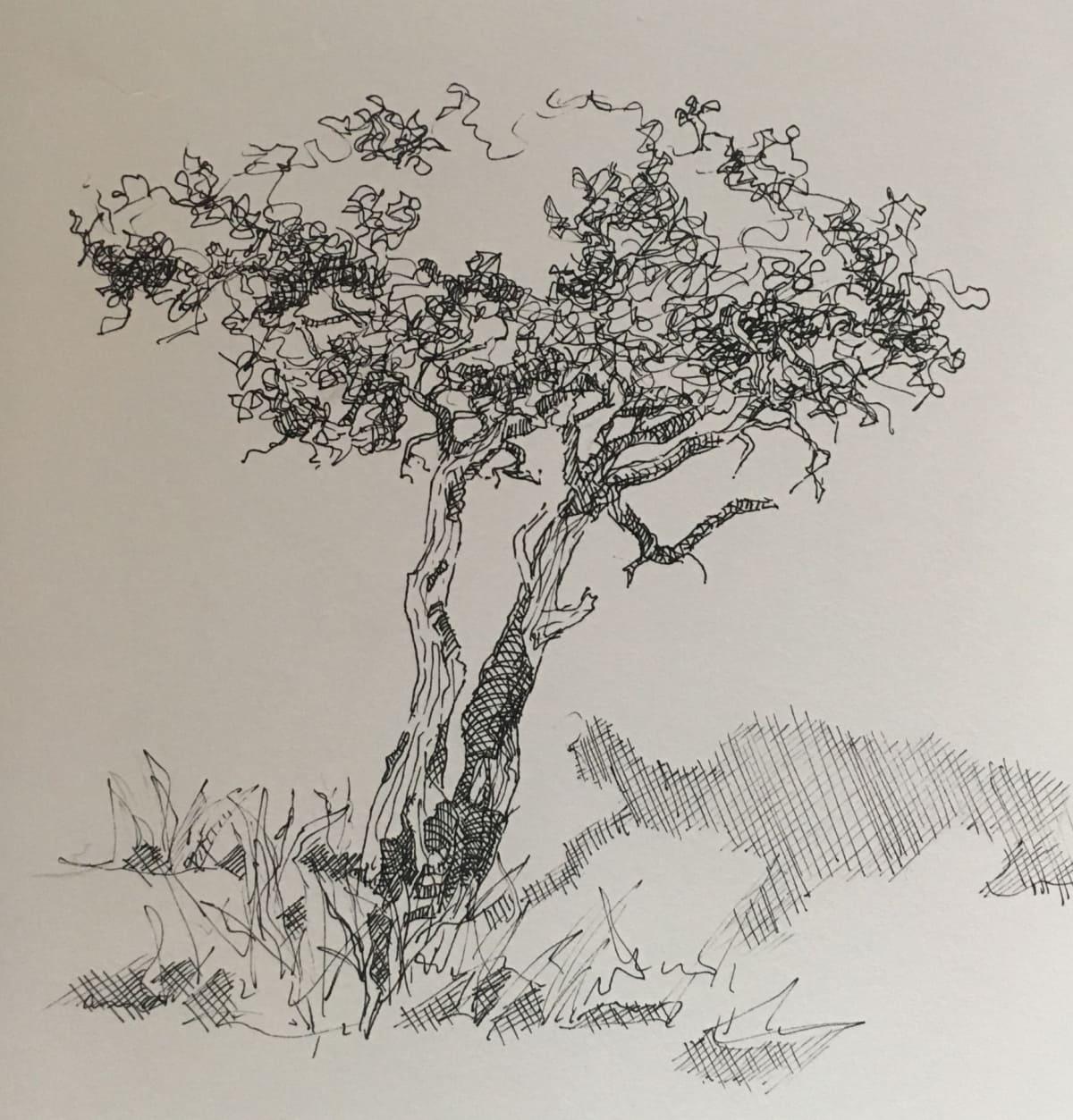 Vivien Budge , Shepherd tree, 2018