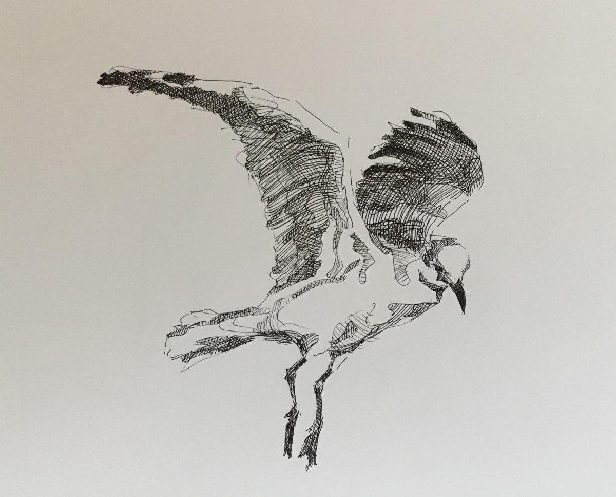 Vivien Budge , Seagull, 2018