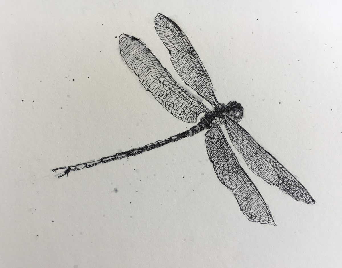 Vivien Budge , Dragonfly, 2018