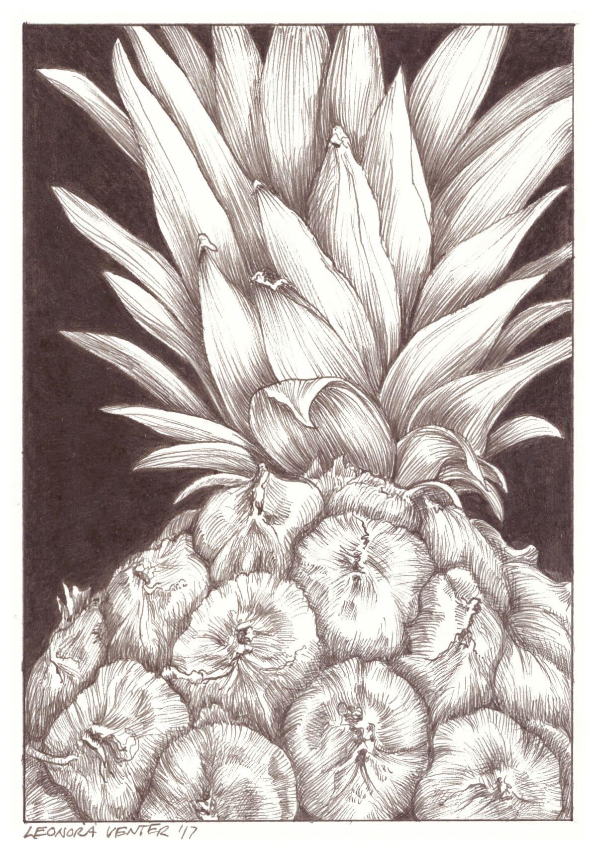 Leonora Venter, Pineapple, 2017