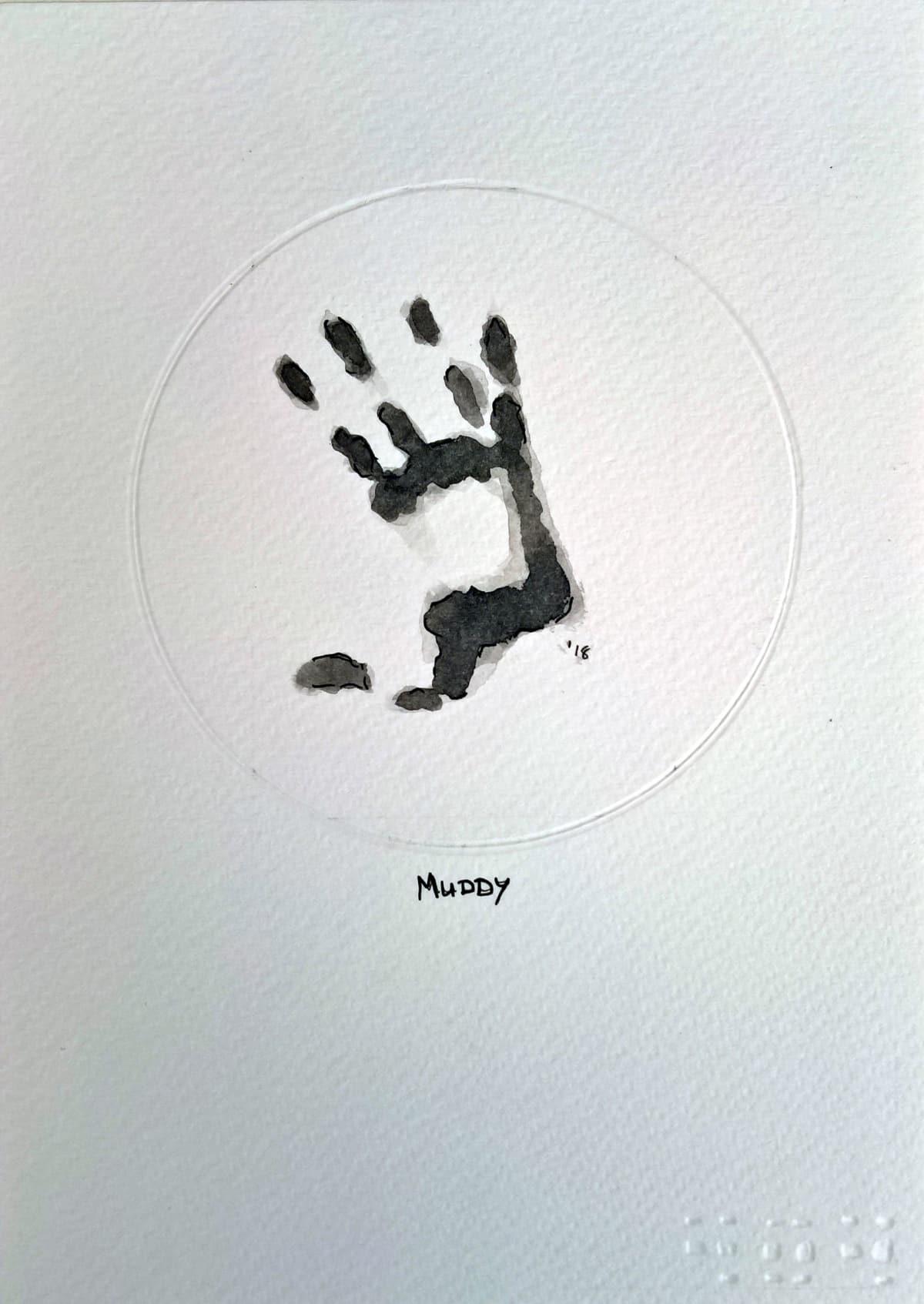 404, Muddy (B), 2018