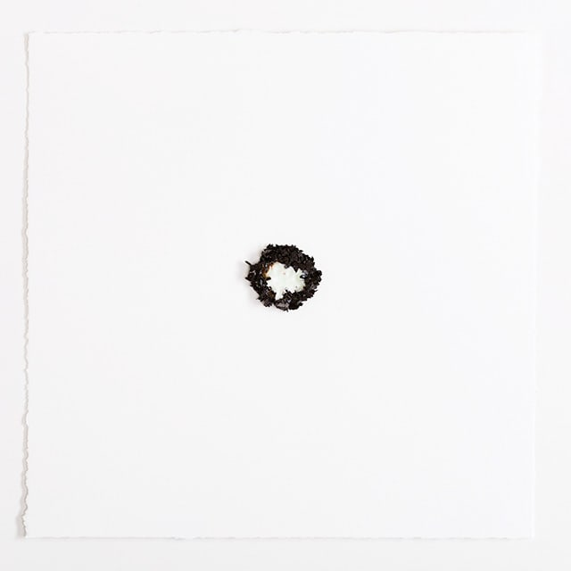 Jessica McCambly, Shatter 27, 2013