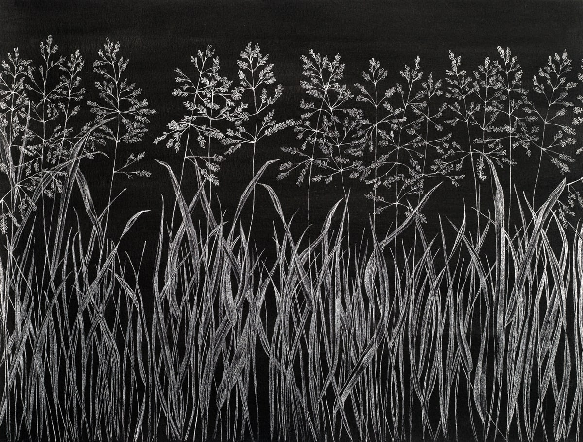 Margot Glass, Grasses 6, 2019