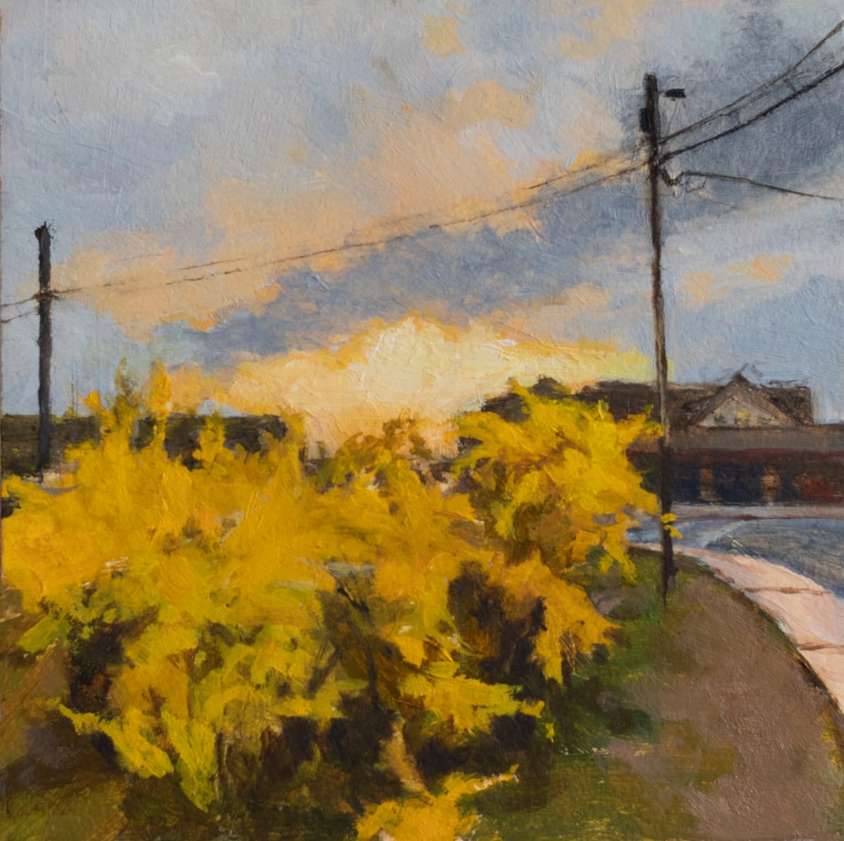 Sally Maca, Forsythia at Sunset, 2019