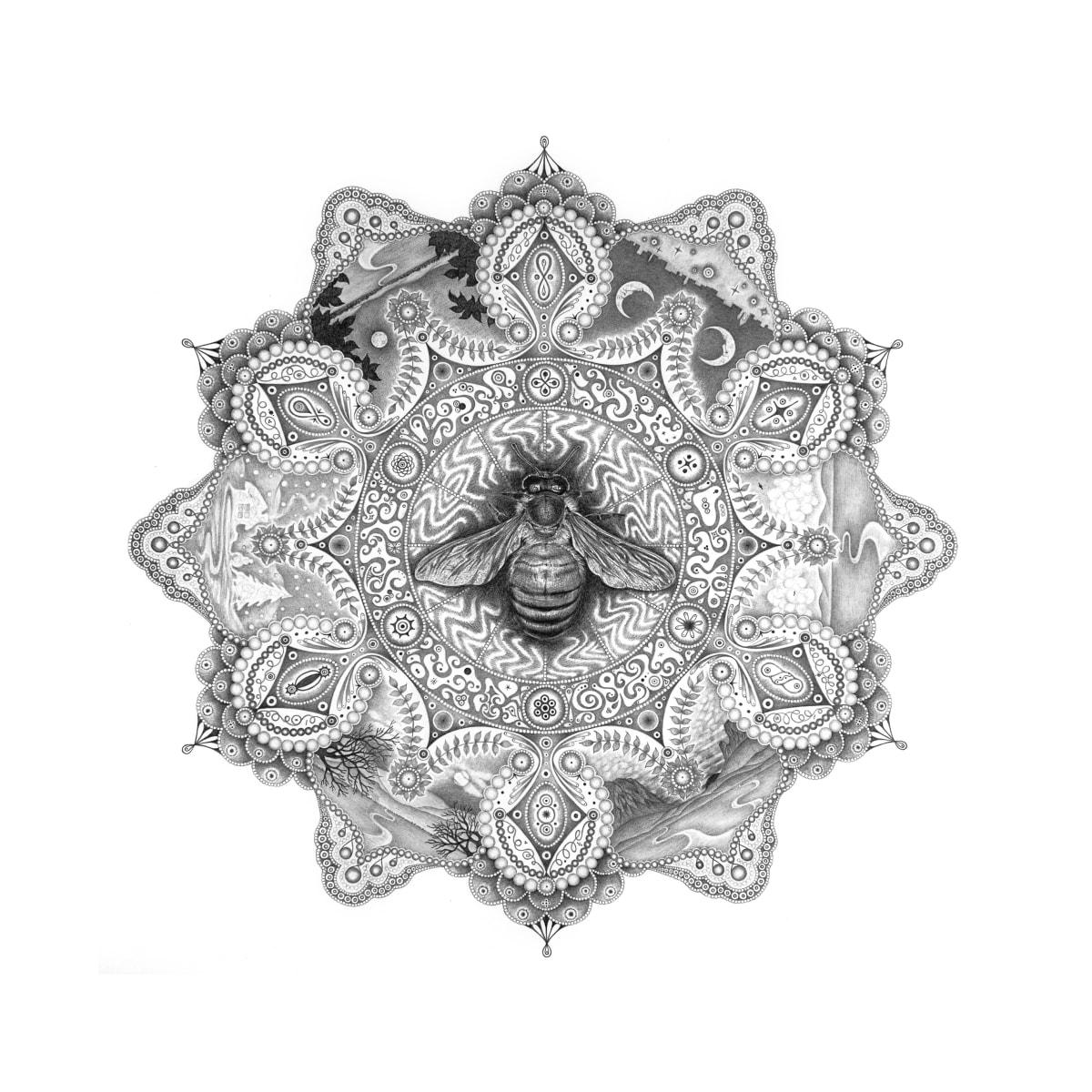 "Michiyo Ihara, Snowflakes #99 ""Pollinator"", 2013"