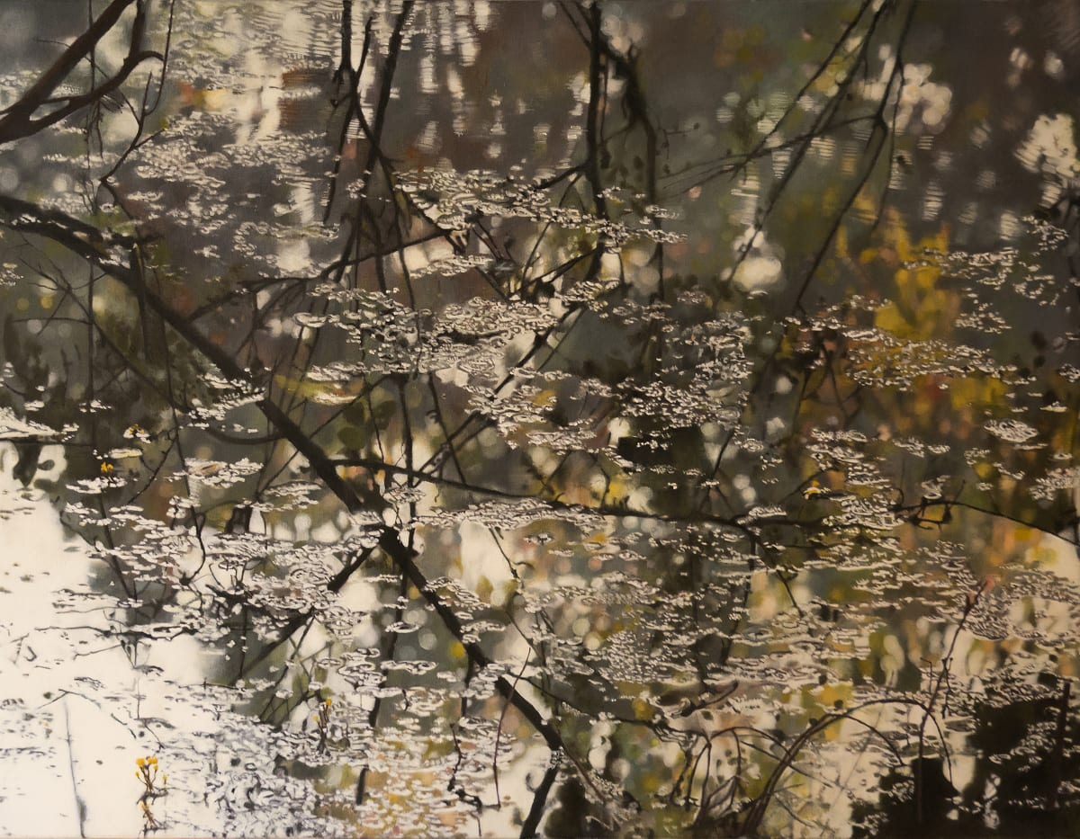 Domenico Pasqua, Reflections in Keoladeo, 2019