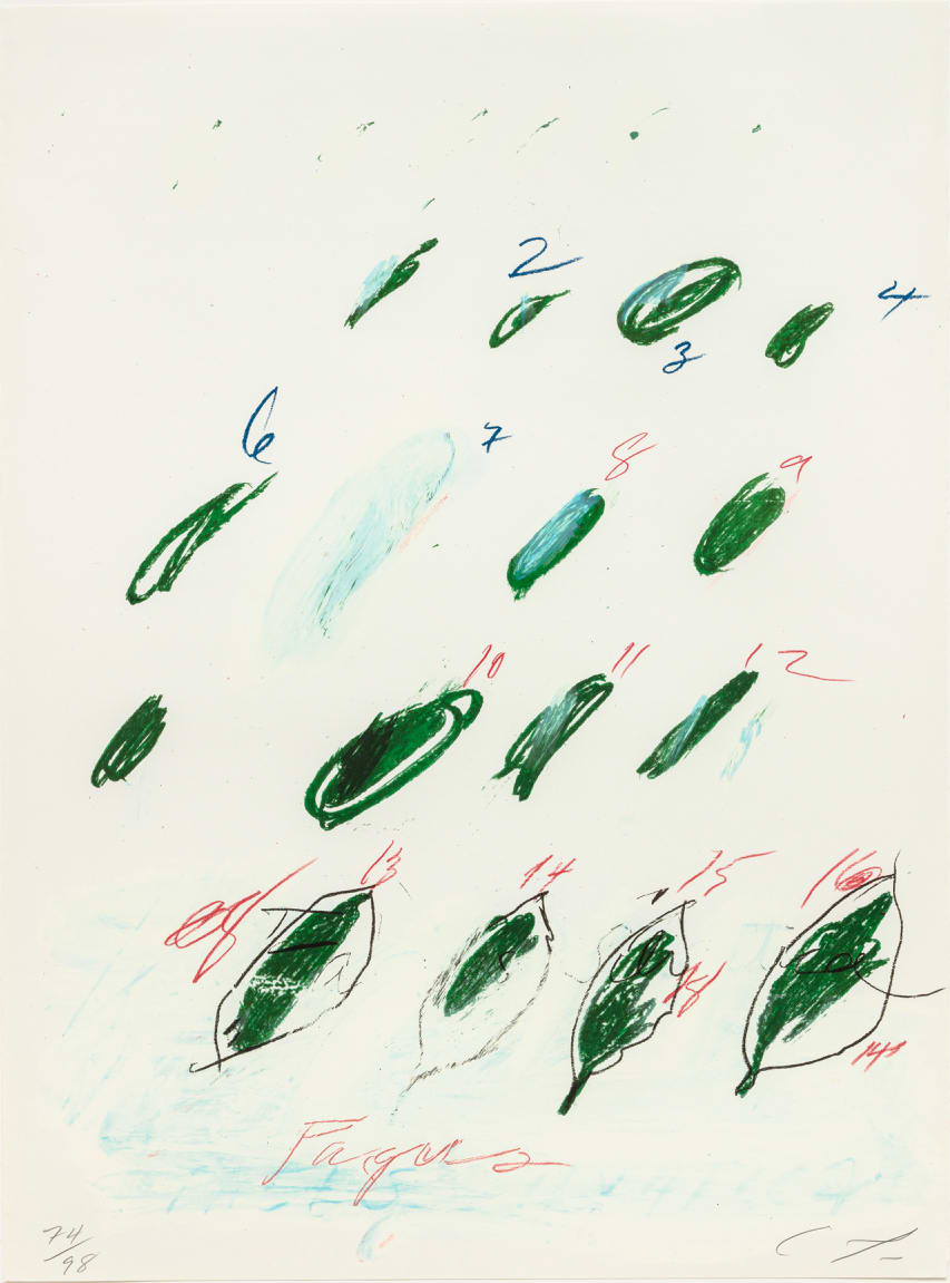 Cy Twombly Natural History II, Some Trees of Italy (G), 1975-76 Portfolio of eight prints. Mixed media technique: Lithograph, grano-lithograph, collotype on Fabriano paper Each sheet: 76 x 56.5 cm Frame: 87 x 67 x 4.2 cm Edition of 98 + 17 AP + 1 PP + 1 SP