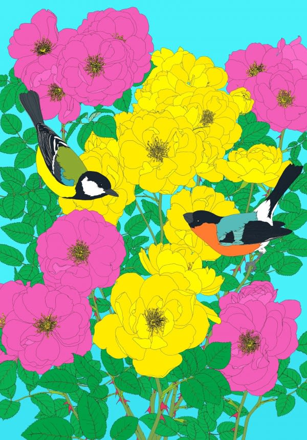 Robin Duttson Bullfinch, Great Tit and Roses, 2013 19-colour screenprint on Somerset 410gsm paper 116 x 85 cm Edition of 45