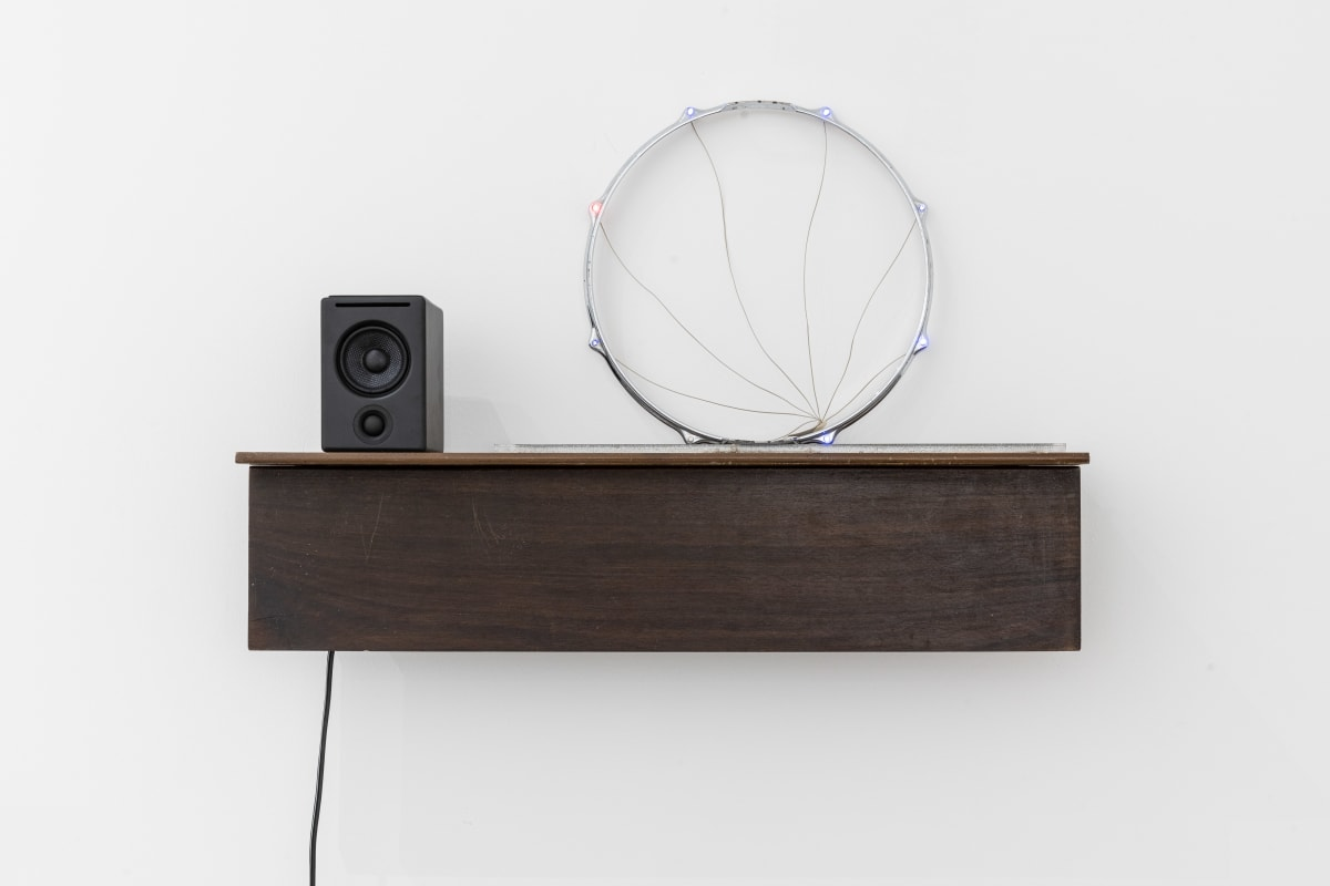 Haroon Mirza, Untitled Song #6, 2012