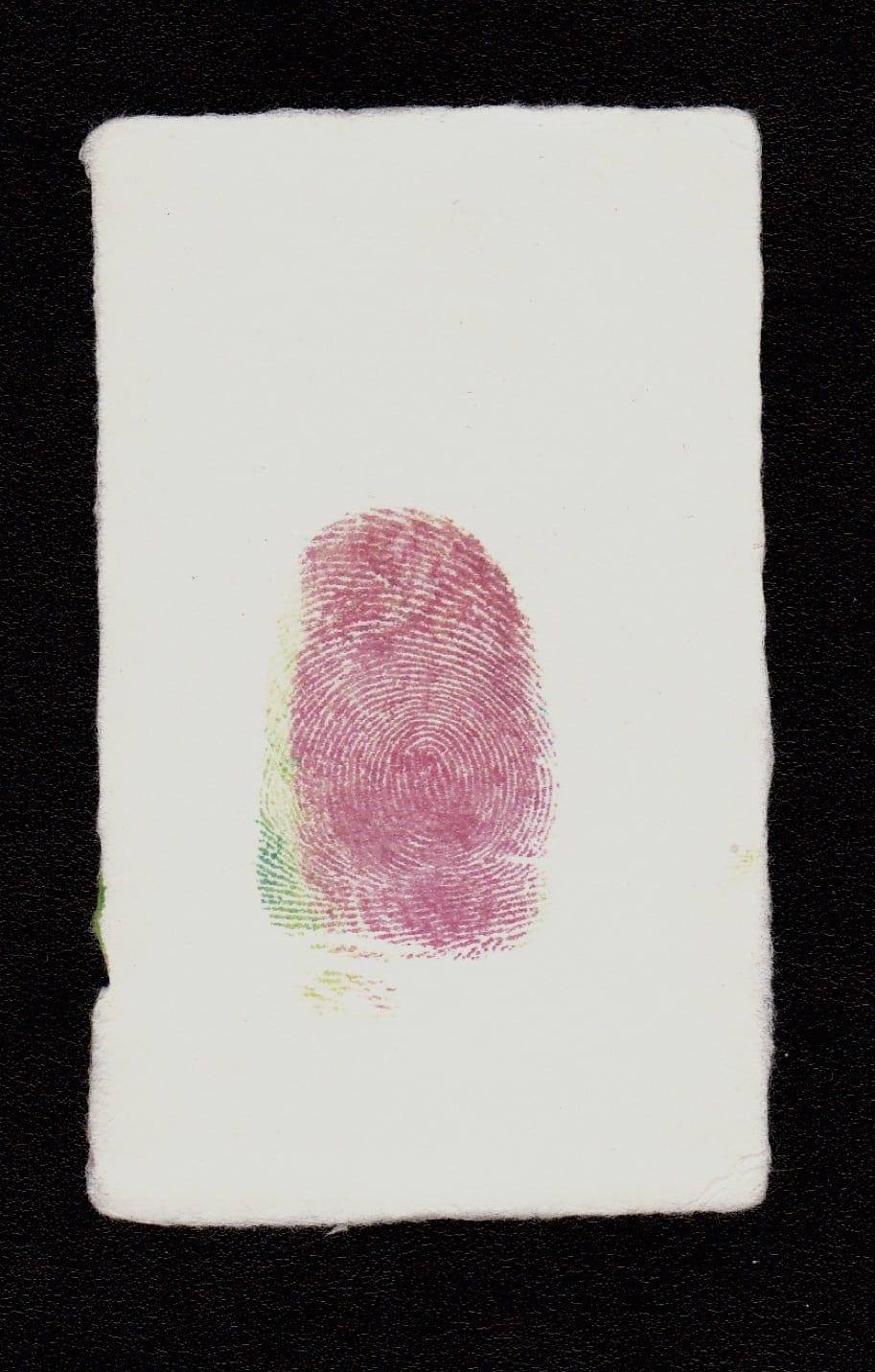 David HAMMONS, Untitled, 2008