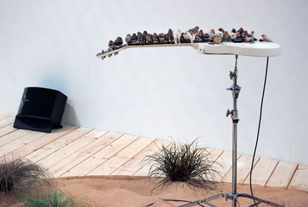 Céleste BOURSIER-MOUGENOT From here to ear, 2008