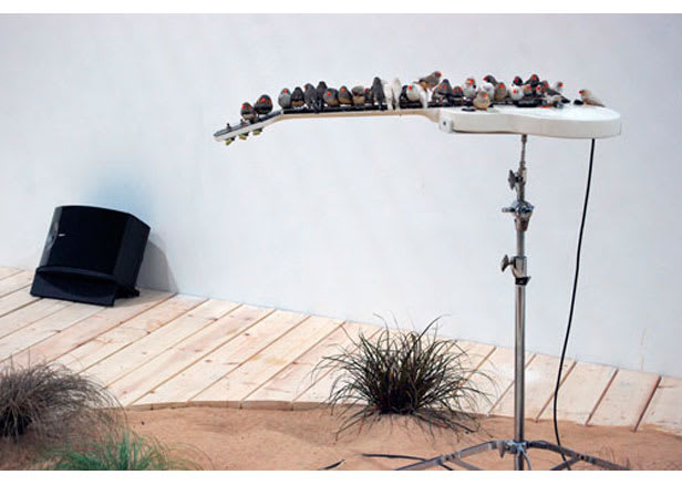 BOURSIER-MOUGENOT Céleste, From here to ear, 2008