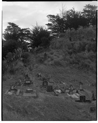 Mark Adams At Tokatoka, Wairoa River, Northland 1 (7.2005), 19/07/2005 Analogue fibre-based gold-toned silver bromide pri 24 x 19.7 in 61 x 50 cm