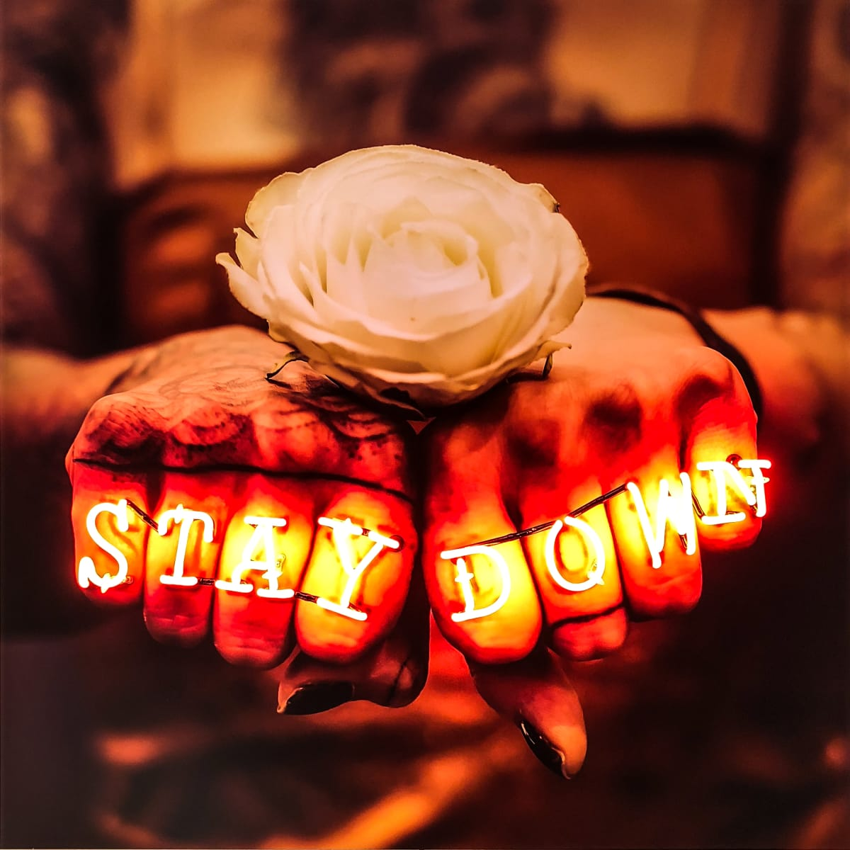 Stuart Robertson STAY DOWN Hand blown glass lettering, orange neon, giclée archival print, black acrylic box mount 100 x 100 x 7.5 cm 39 3/8 x 39 3/8 x 2 3/4 in Edition of 6
