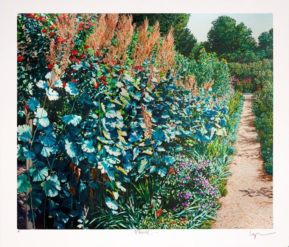 Karl Maughan Plume (Unframed), 2012 Screen print 27.6 x 34.4 in 70 x 87.5 cm #56/100
