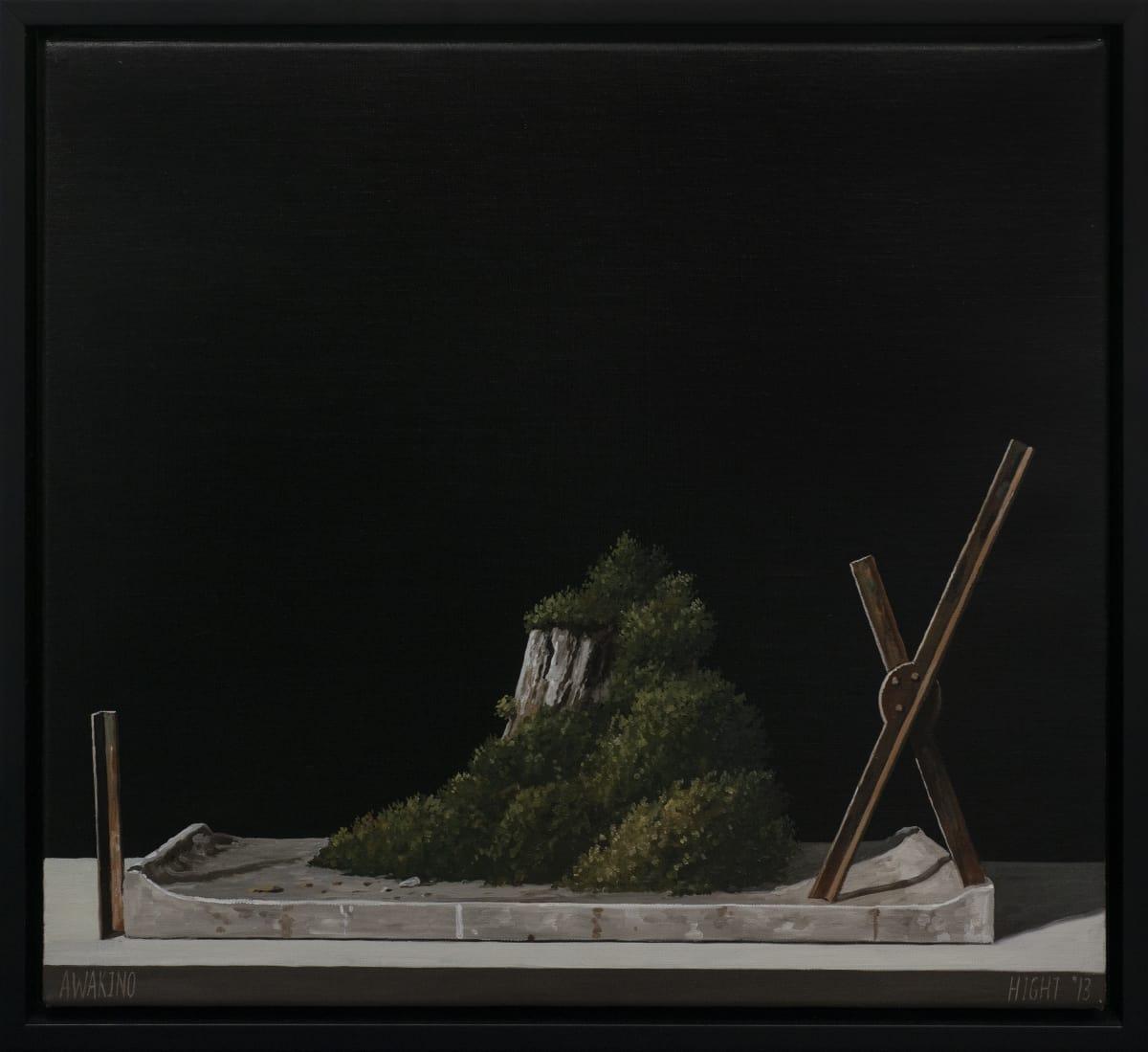 Michael Hight  Awakino, 2012  Oil on linen  14 x 16.1 in 35.5 x 41 cm