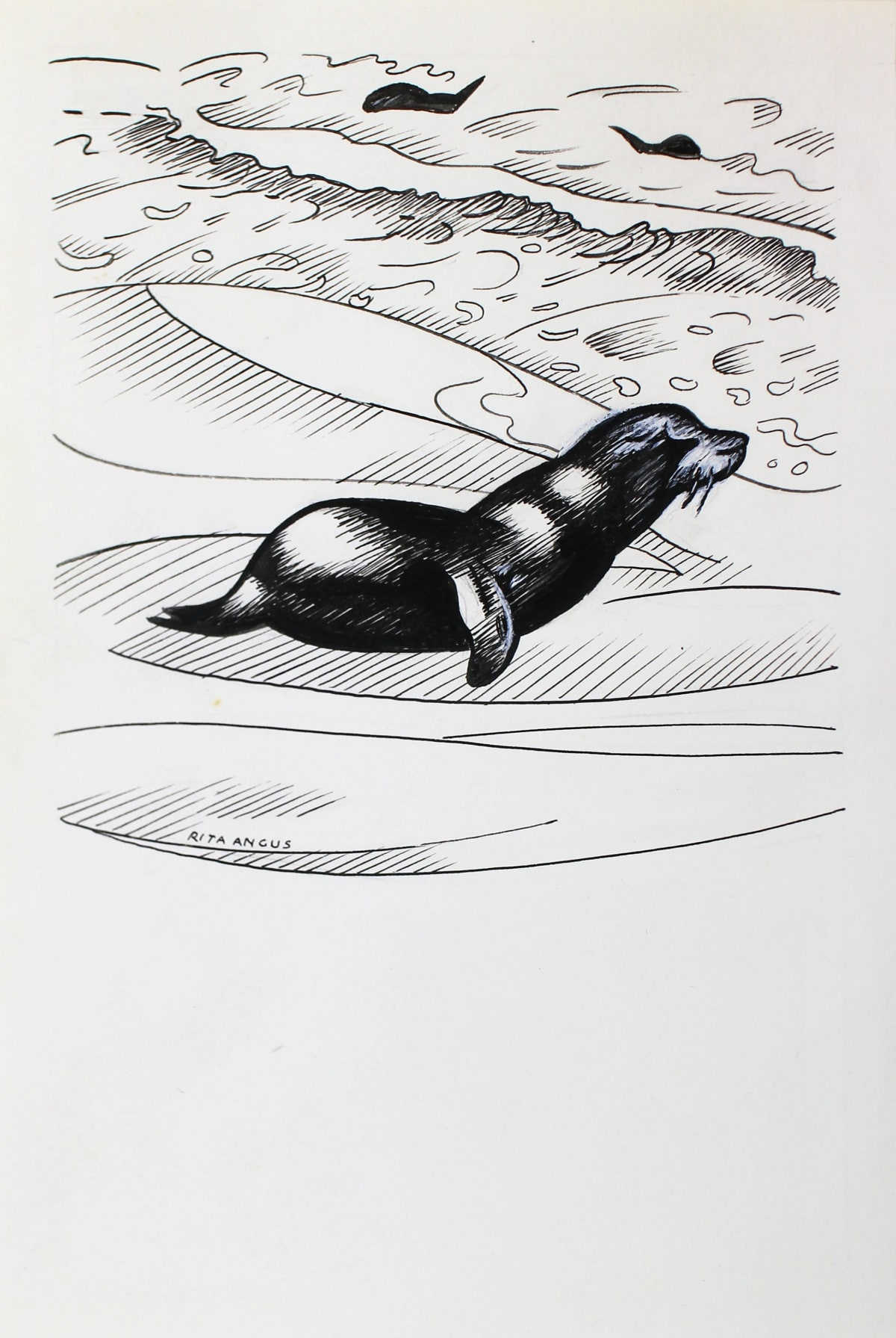 Rita Angus Untitled [Seal Large], 1950s Ink on paper 5.9 x 5.4 in 15 x 13.6 cm