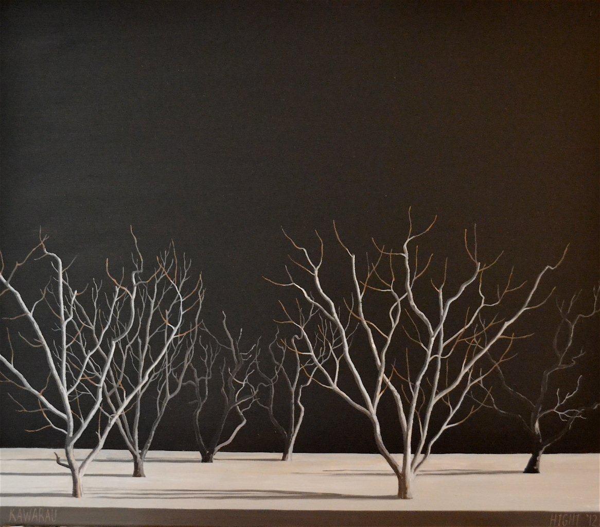 Michael Hight Kawarau, 2012 Oil on linen 14 x 16.1 in 35.5 x 41 cm