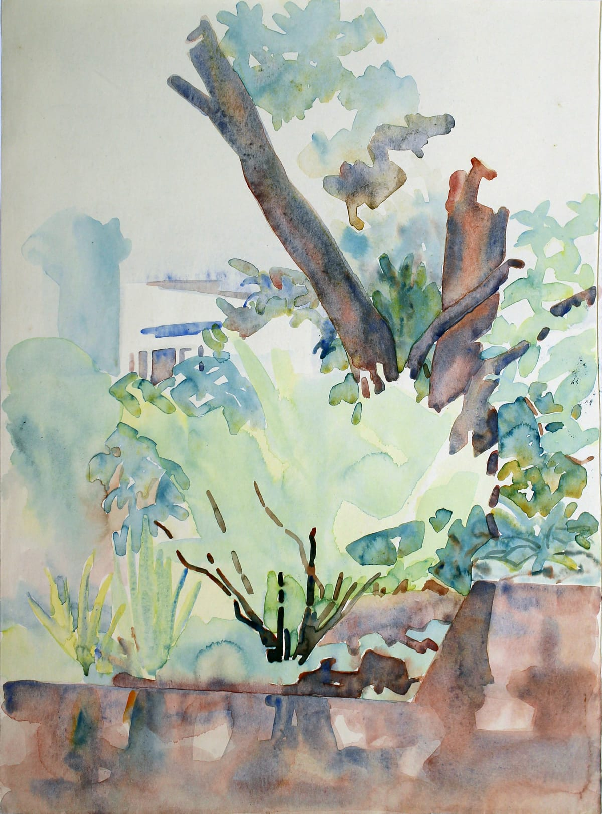 Rita Angus Tree Study, Thorndon, n.d. Watercolour on paper 14.9 x 11 in 37.9 x 27.9 cm