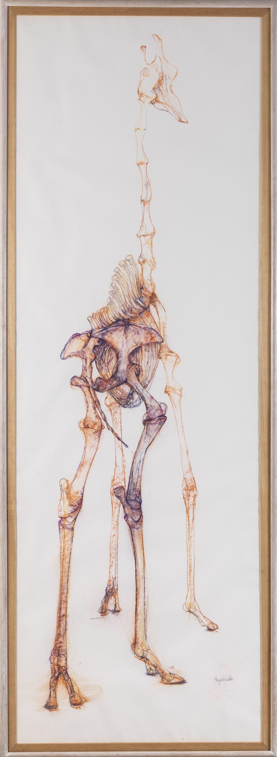 Bryan Kneale, Giraffe, c.1987