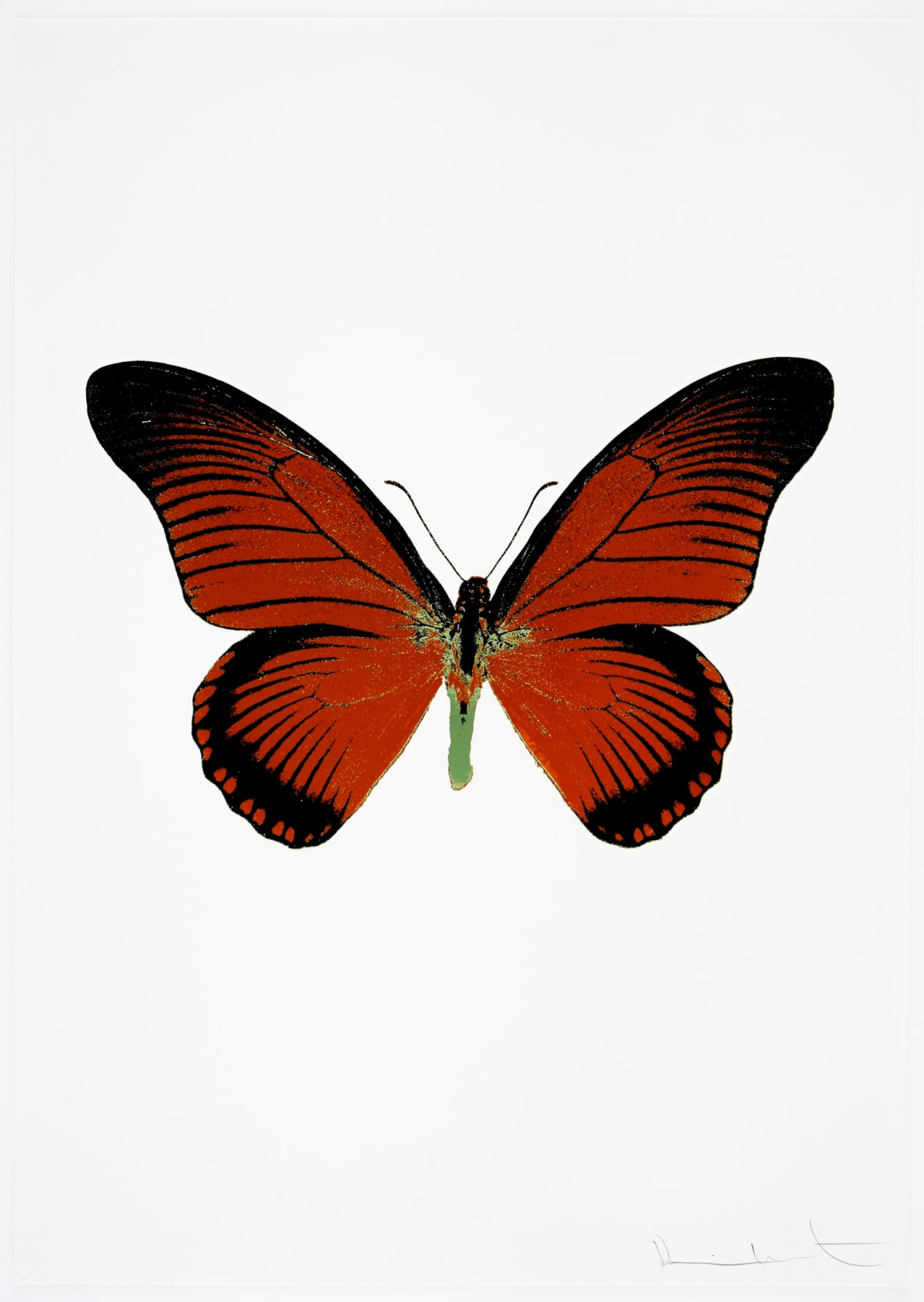 Damien Hirst The Souls IV - Prairie Copper/Raven Black/Leaf Green Damien Hirst butterfly foil print for sale Damien Hirst print for sale , 2010 3 colour foil block on 300gsm Arches 88 archival paper. Signed and numbered. Published by Paul Stolper and Other Criteria 72 x 51cm OC8006 / 1418-29 Edition of 15