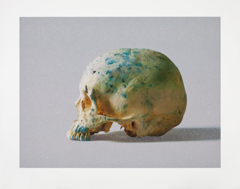 Damien Hirst Studio Half Skull, half face (with diamond dust), 2009 Silkscreen on 410gsm Somerset tub-sized, diamond dust. Signed and numbered 88.5cm x 110cm Edition of 75