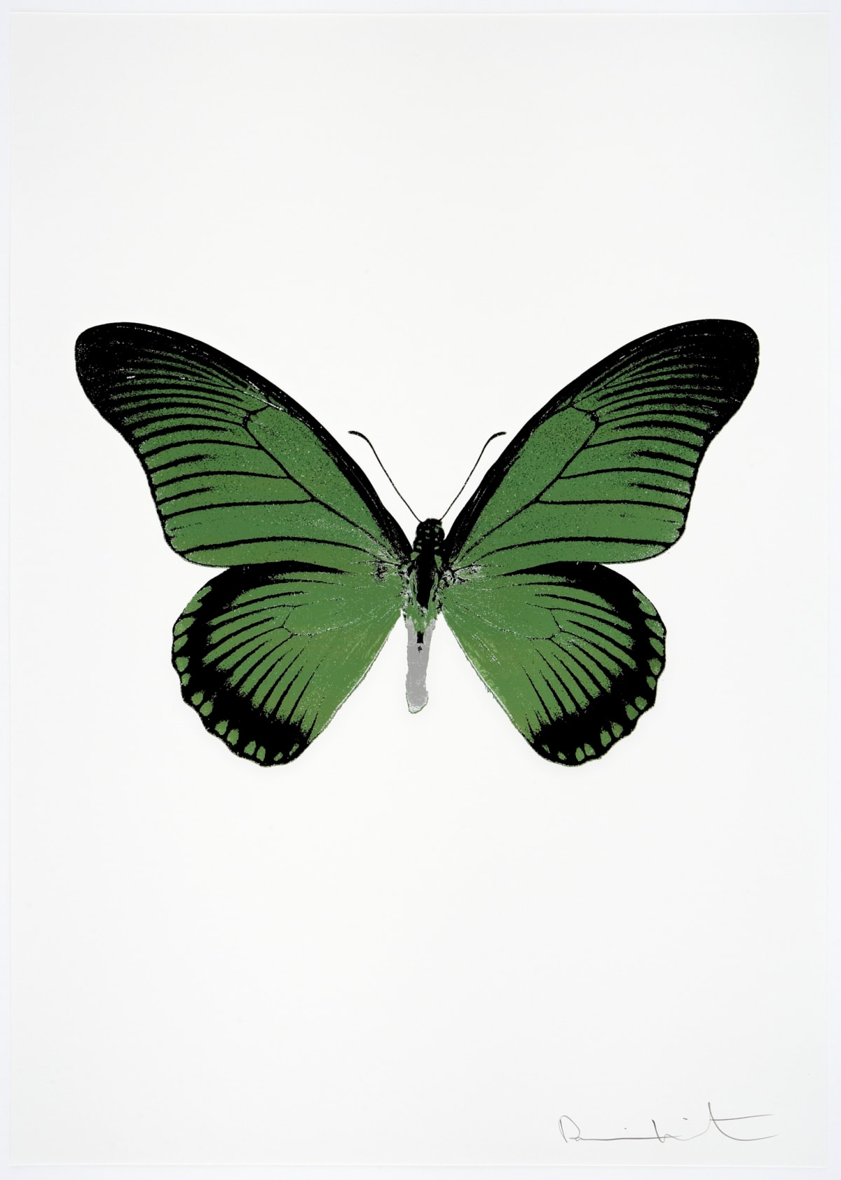 Damien Hirst The Souls IV - Leaf Green/Raven Black/Silver Gloss Damien Hirst butterfly foil print for sale Damien Hirst print for sale , 2010 3 colour foil block on 300gsm Arches 88 archival paper. Signed and numbered. Published by Paul Stolper and Other Criteria 72 x 51cm OC7980 / 1418-3 Edition of 15