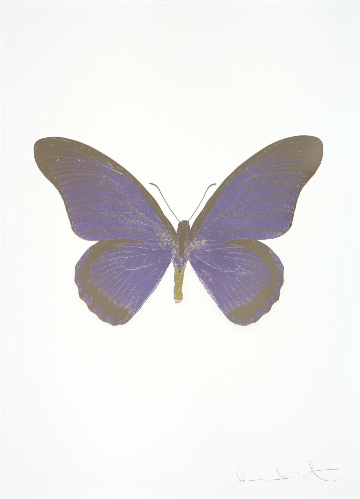 Damien Hirst The Souls IV - Aquarius/Gunmetal/Cool Gold Damien Hirst butterfly foil print for sale Damien Hirst print for sale , 2010 3 colour foil block on 300gsm Arches 88 archival paper. Signed and numbered. Published by Paul Stolper and Other Criteria 72 x 51cm OC8010 / 1418-33 Edition of 15