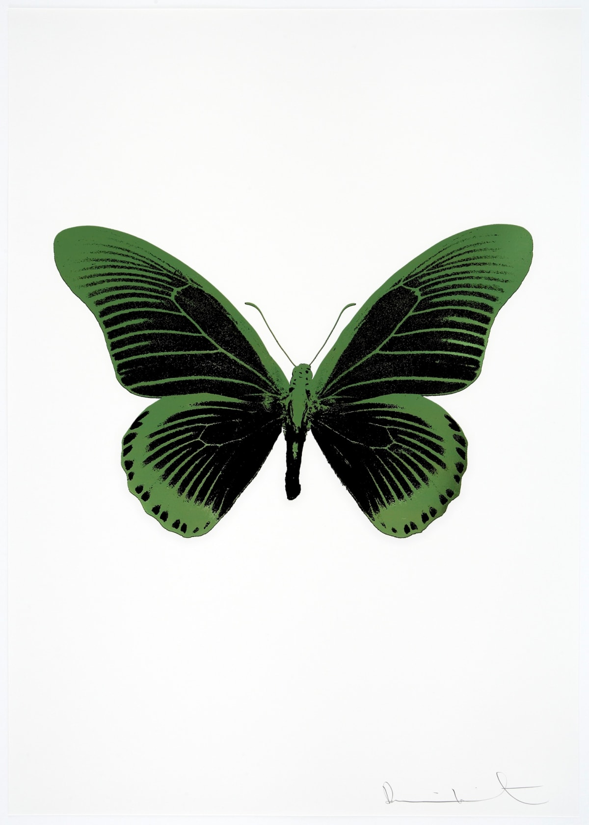 Damien Hirst The Souls IV - Raven Black/Leaf Green Damien Hirst butterfly foil print for sale Damien Hirst print for sale , 2010 2 colour foil block on 300gsm Arches 88 archival paper. Signed and numbered. Published by Paul Stolper and Other Criteria 72 x 51cm OC8053 / 1418-76 Edition of 15