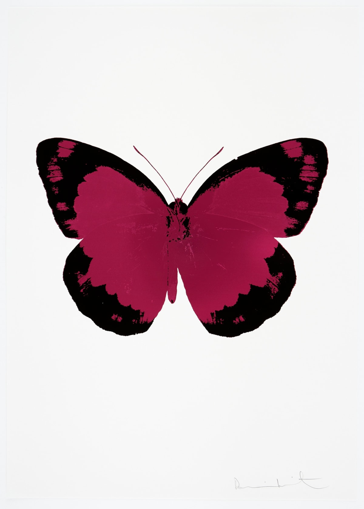 Damien Hirst The Souls II - Fuchsia Pink/Raven Black/Blind Impression, 2010 2 colour foil block on 300gsm Arches 88 archival paper. Signed and numbered. Published by Paul Stolper and Other Criteria 72 x 51cm OC7834 / 658-17 Edition of 15