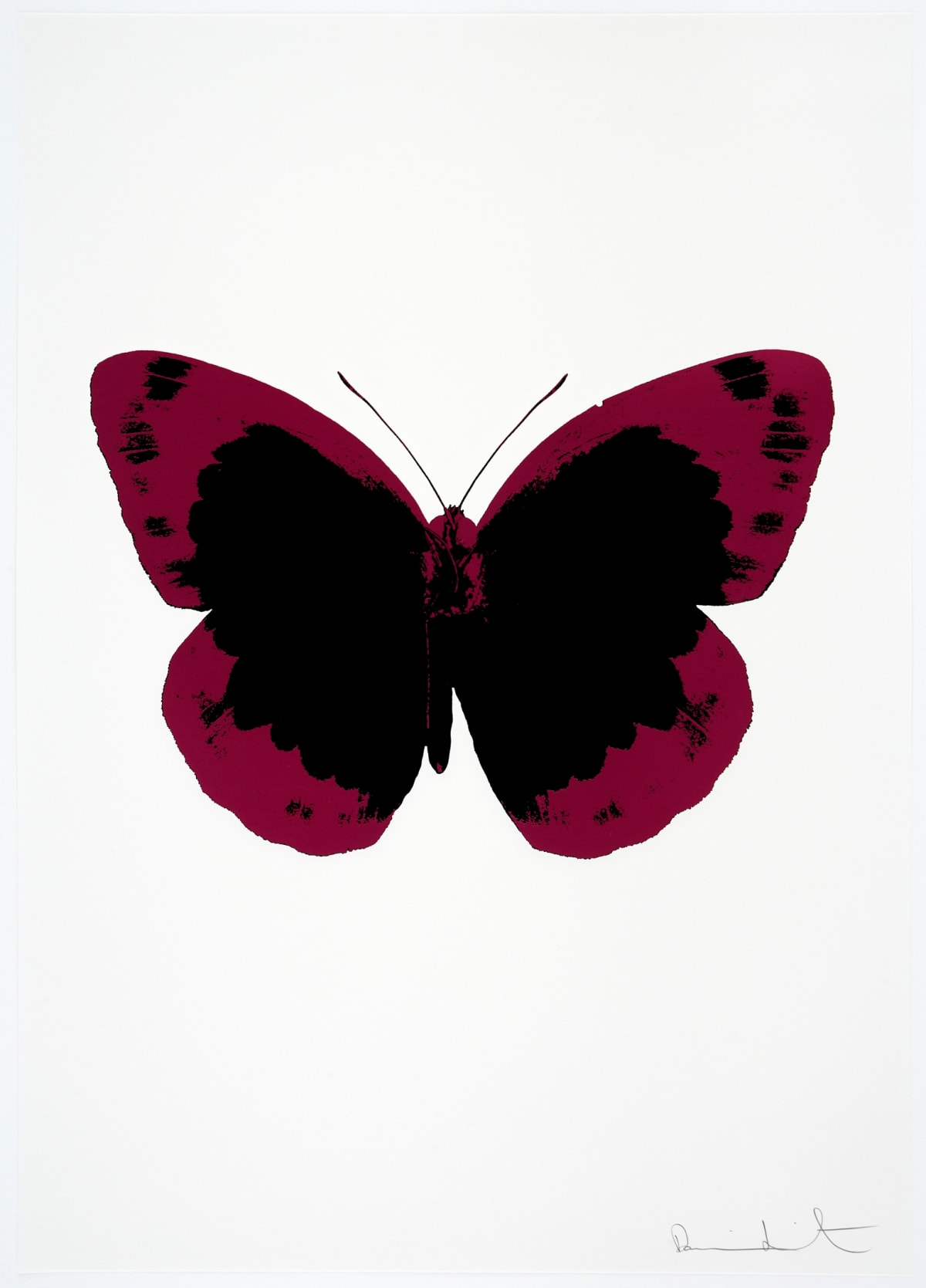 Damien Hirst The Souls II - Raven Black/Fuchsia Pink/Blind Impression, 2010 2 colour foil block on 300gsm Arches 88 archival paper. Signed and numbered. Published by Paul Stolper and Other Criteria 72 x 51cm OC7885 / 658-68 Edition of 15
