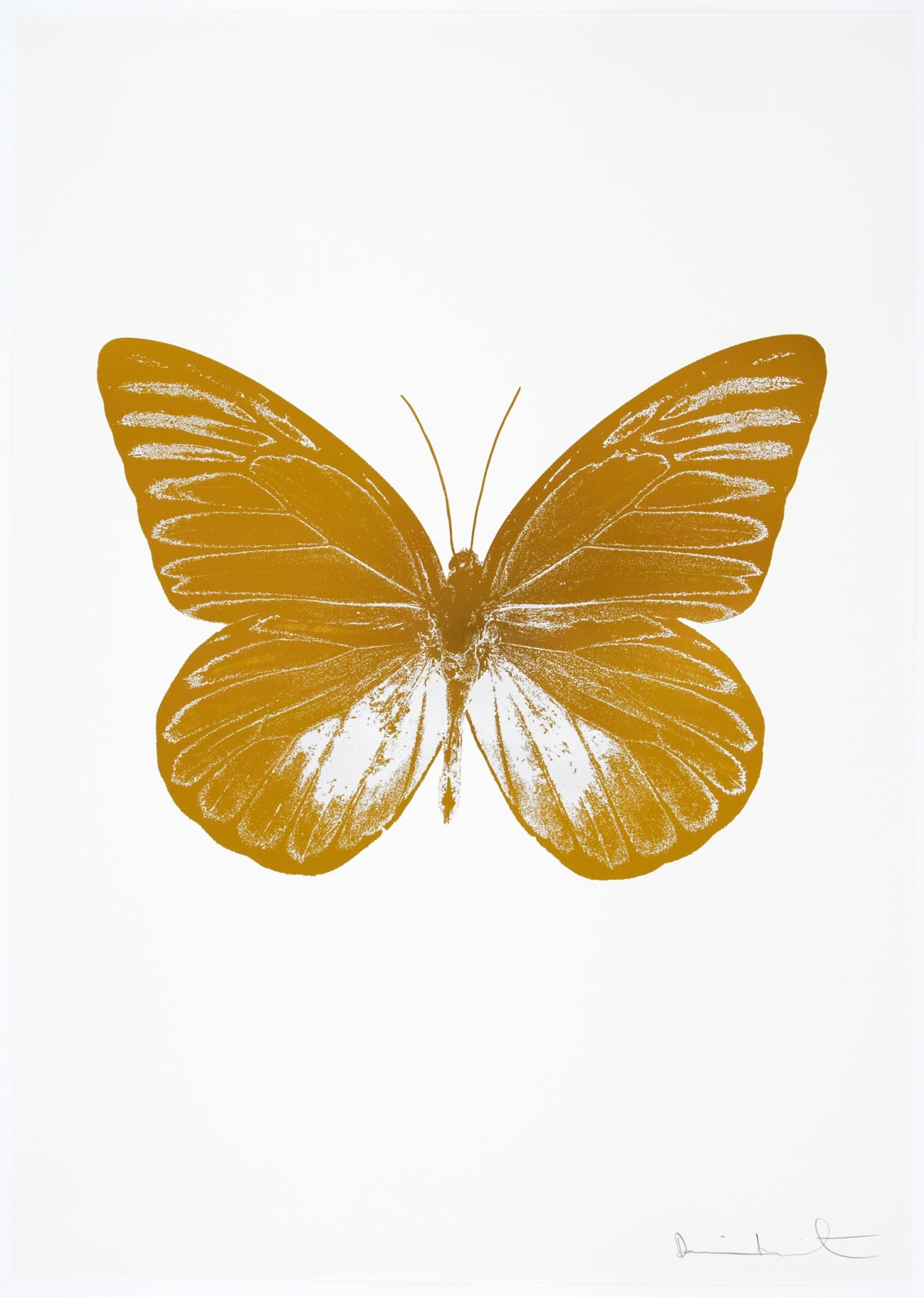 Damien Hirst The Souls I - Paradise Copper/Cotton White, 2010 2 colour foil block on 300gsm Arches 88 archival paper. Signed and numbered. Published by Paul Stolper and Other Criteria 72 x 51cm OC7792 / 659-55 Edition of 15