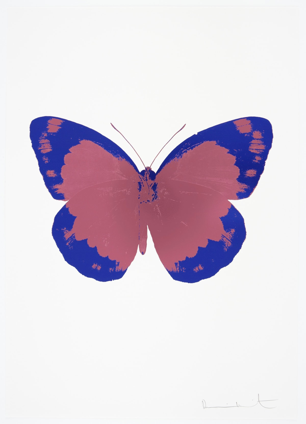 Damien Hirst The Souls II - Loganberry Pink/Westminster Blue/Blind Impression, 2010 2 colour foil block on 300gsm Arches 88 archival paper. Signed and numbered. Published by Paul Stolper and Other Criteria 72 x 51cm OC7826 / 658-9 Edition of 15
