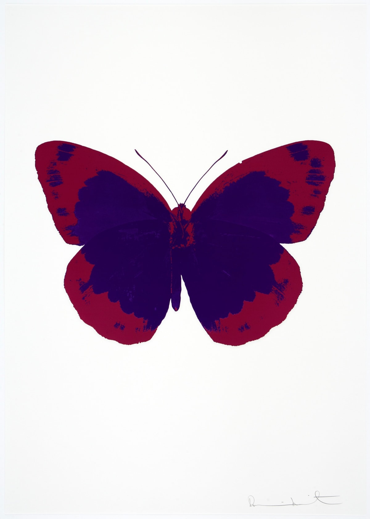 Damien Hirst The Souls II - Imperial Purple/Fuchsia Pink/Blind Impression, 2010 2 colour foil block on 300gsm Arches 88 archival paper. Signed and numbered. Published by Paul Stolper and Other Criteria 72 x 51cm OC7856 / 658-39 Edition of 15