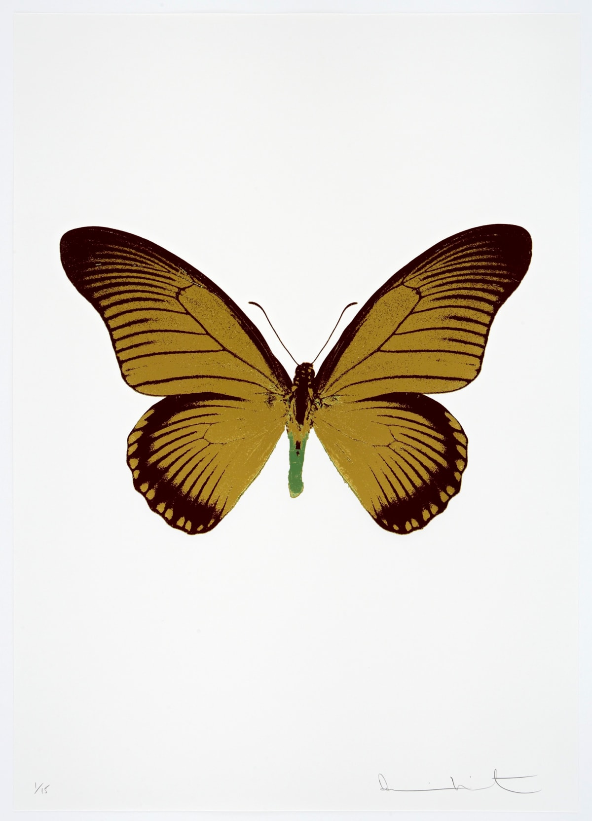 Damien Hirst The Souls IV - Oriental Gold/Burgundy/Leaf Green Damien Hirst butterfly foil print for sale Damien Hirst print for sale , 2010 3 colour foil block on 300gsm Arches 88 archival paper. Signed and numbered. Published by Paul Stolper and Other Criteria 72 x 51cm OC8008 / 1418-31 Edition of 15