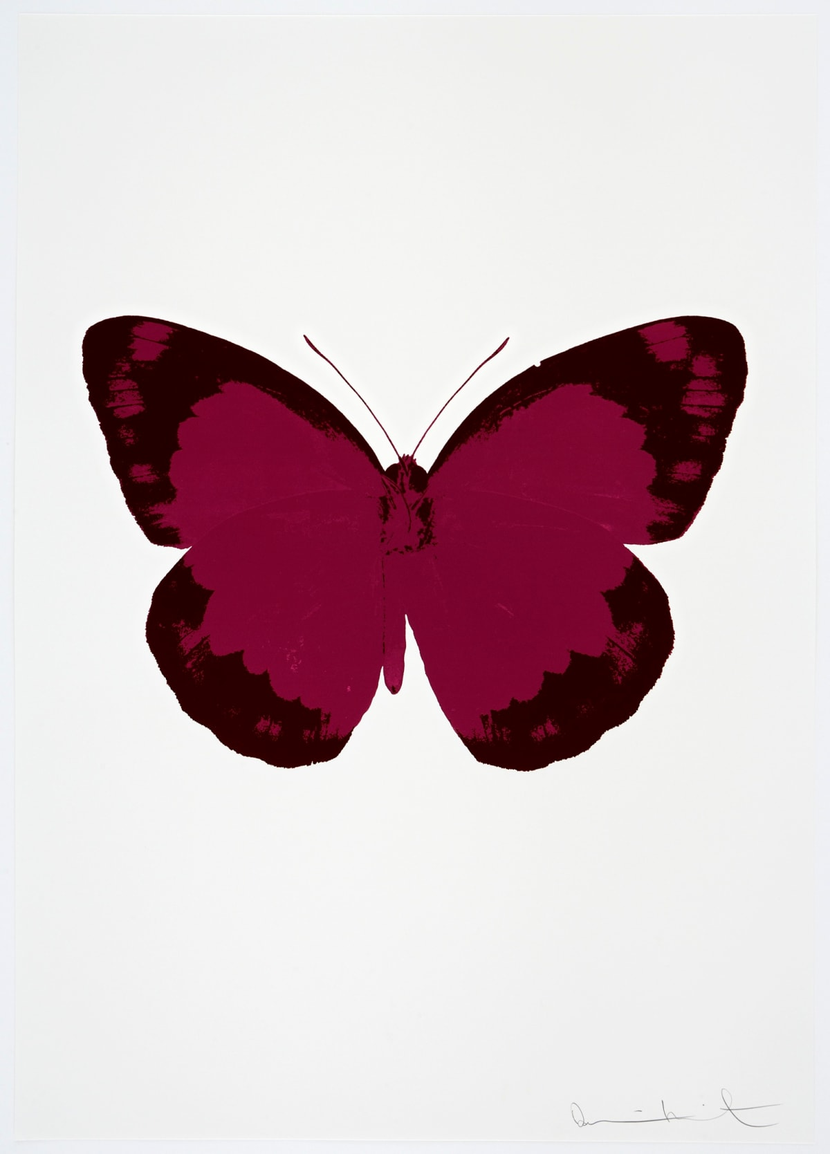 Damien Hirst The Souls II - Fuchsia Pink/Burgundy/Blind Impression, 2010 2 colour foil block on 300gsm Arches 88 archival paper. Signed and numbered. Published by Paul Stolper and Other Criteria 72 x 51cm OC7893 / 658-76 Edition of 15
