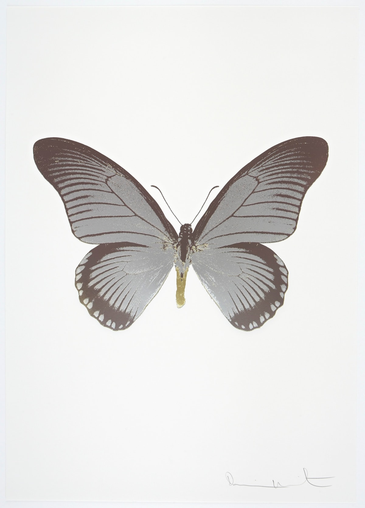 Damien Hirst The Souls IV - Silver Gloss/Gunmetal/Cool Gold Damien Hirst butterfly foil print for sale Damien Hirst print for sale , 2010 3 colour foil block on 300gsm Arches 88 archival paper. Signed and numbered. Published by Paul Stolper and Other Criteria 72 x 51cm OC7981 / 1418-4 Edition of 15