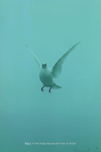 Damien Hirst Fig.1 A Faint Hope Beyond the Fear of Death, 2005 Silkscreen on Somerset satin 410gsm Signed and numbered 100 x 66.7cm Edition of 55