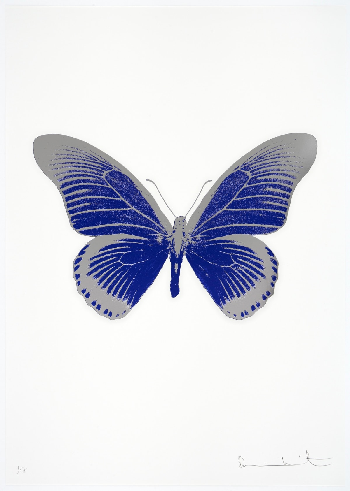 Damien Hirst The Souls IV - Westminster Blue/Silver Gloss Damien Hirst butterfly foil print for sale Damien Hirst print for sale , 2010 2 colour foil block on 300gsm Arches 88 archival paper. Signed and numbered. Published by Paul Stolper and Other Criteria 72 x 51cm OC7983 / 1418-6 Edition of 15