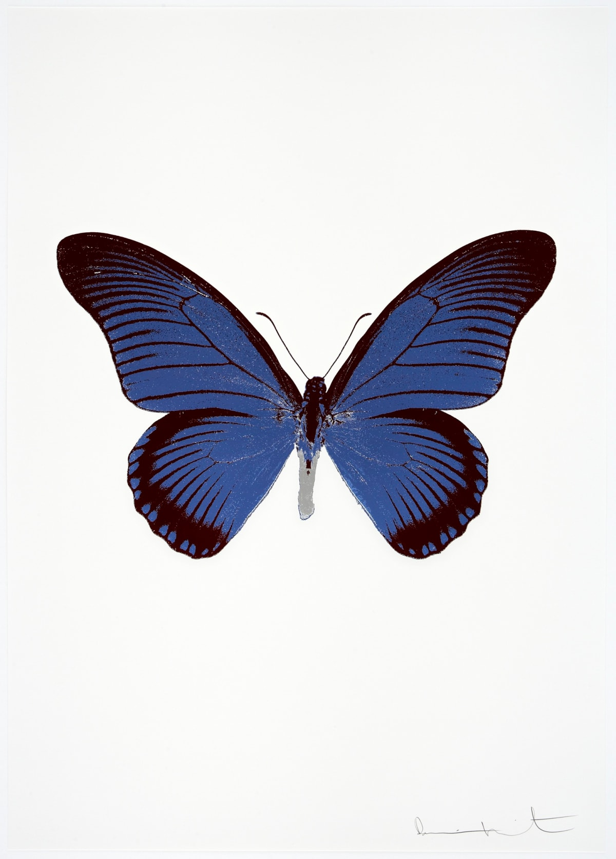 Damien Hirst The Souls IV - Frost Blue/Burgundy/Silver Gloss Damien Hirst butterfly foil print for sale Damien Hirst print for sale , 2010 3 colour foil block on 300gsm Arches 88 archival paper. Signed and numbered. Published by Paul Stolper and Other Criteria 72 x 51cm OC8023 / 1418-46 Edition of 15