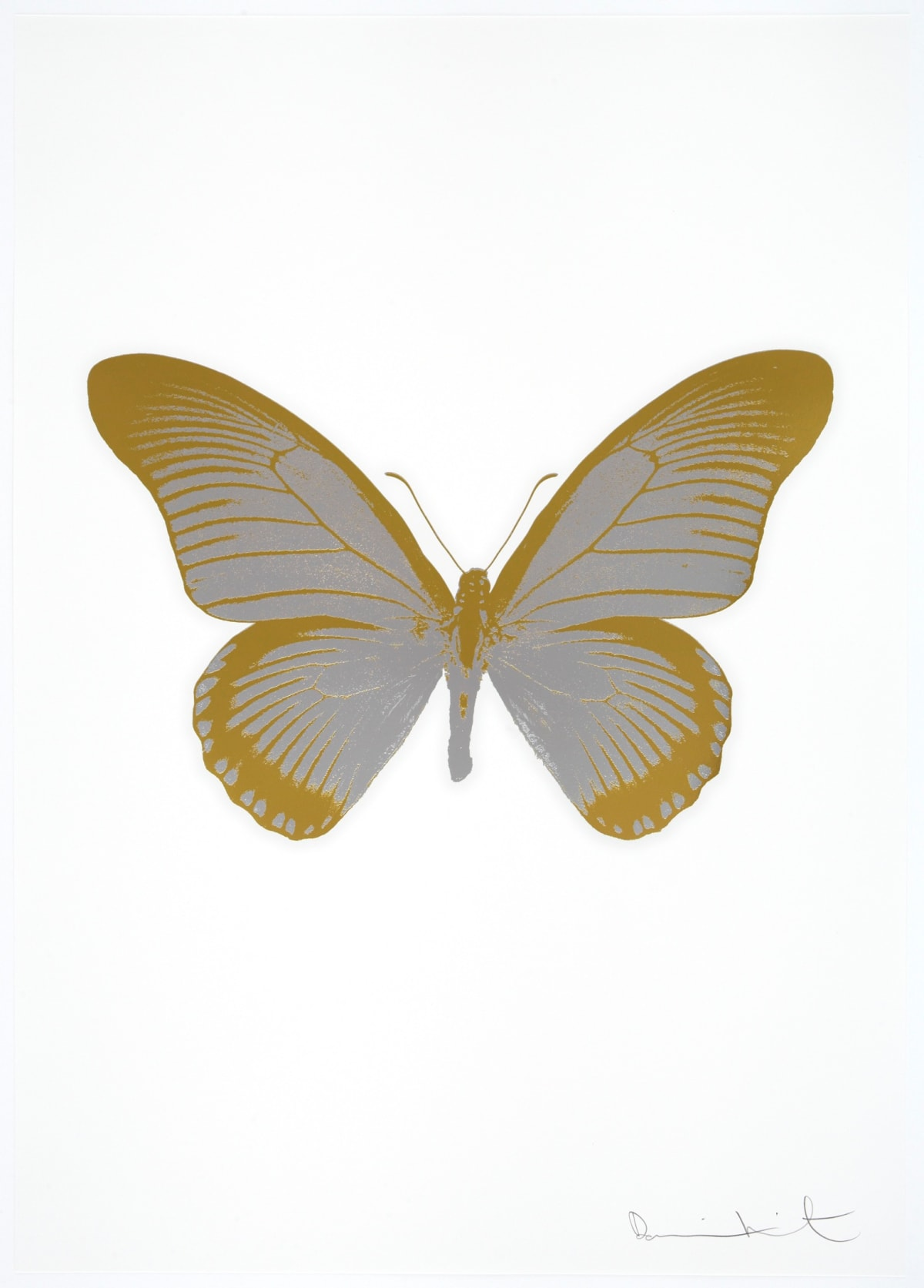 Damien Hirst The Souls IV - Silver Gloss/Oriental Gold Damien Hirst butterfly foil print for sale Damien Hirst print for sale , 2010 2 colour foil block on 300gsm Arches 88 archival paper. Signed and numbered. Published by Paul Stolper and Other Criteria 72 x 51cm OC7989 / 1418-12 Edition of 15