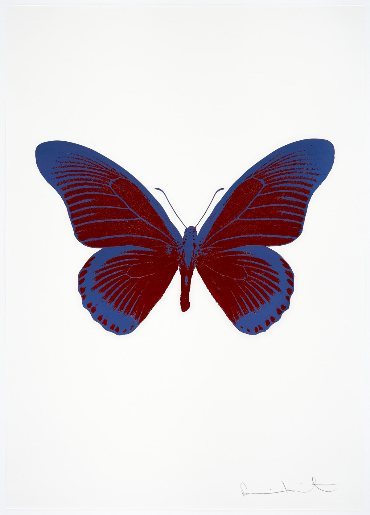 Damien Hirst The Souls IV - Chilli Red/Frost Blue Damien Hirst butterfly foil print for sale Damien Hirst print for sale , 2010 2 colour foil block on 300gsm Arches 88 archival paper. Signed and numbered. Published by Paul Stolper and Other Criteria 72 x 51cm OC8013 / 1418-36 Edition of 15