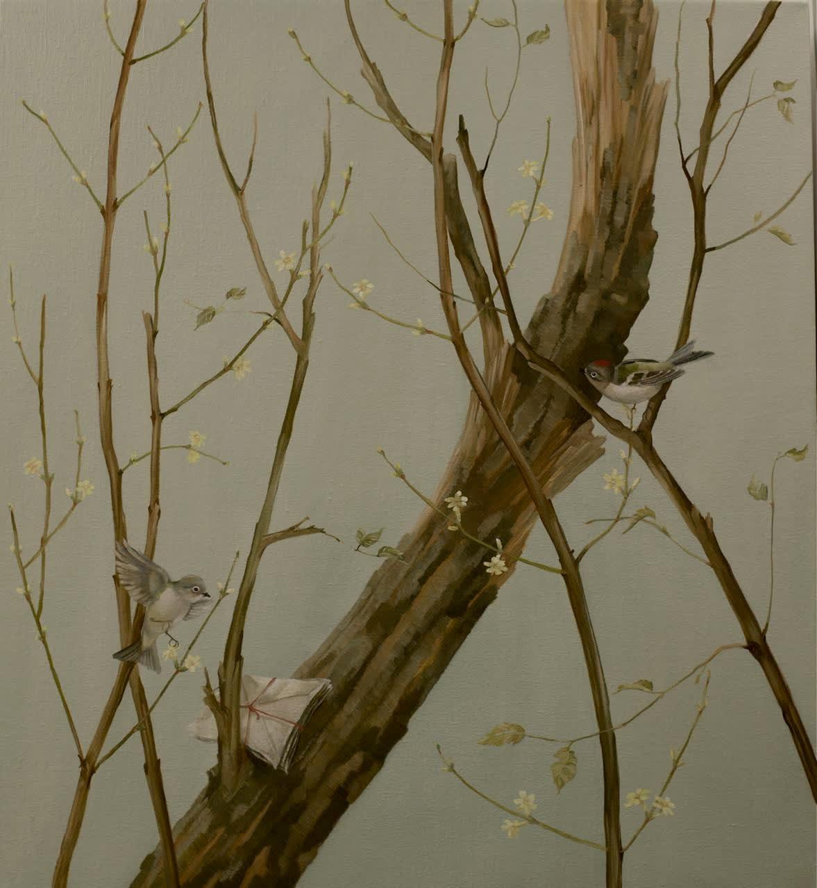 Grace O'Connor Kinglets, 2009 Oil on Linen 61 x 55.9 cm 24 x 22 in